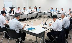 新薬剤師養成問題懇談会
